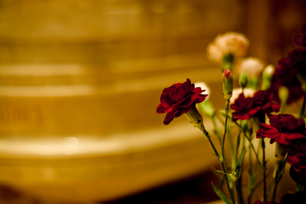 La Fleur by Alex Shahmiri