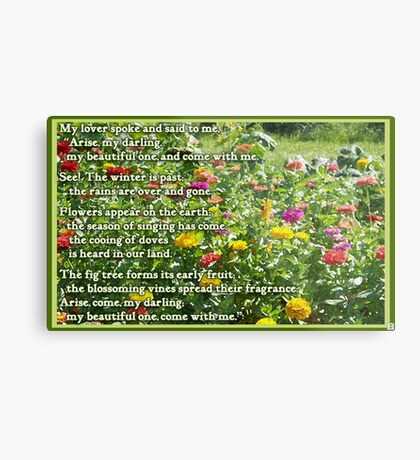 Canticle of Canticles 2:10-13 Metal Print