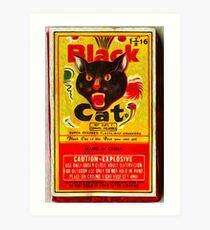 Black Cat Fireworks Art Print