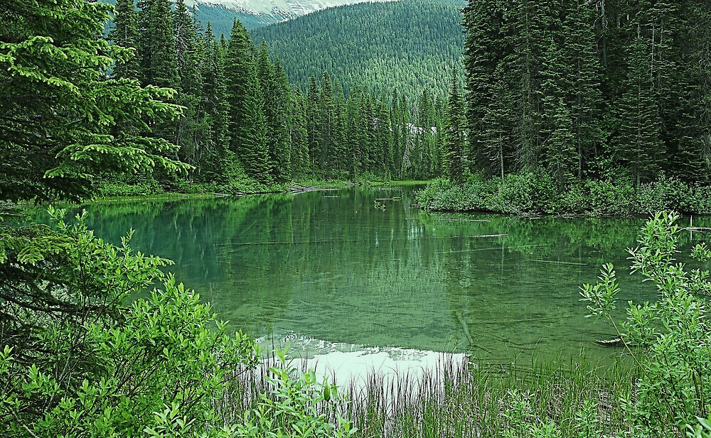 Emerald Lake by roger smith