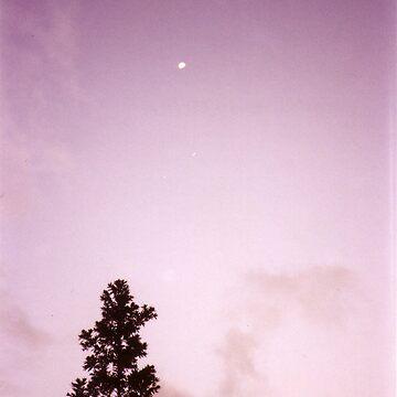 Purple Haze by Arkani
