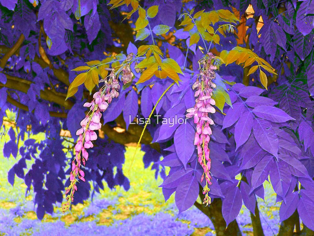 Purple Drops by Lisa Taylor