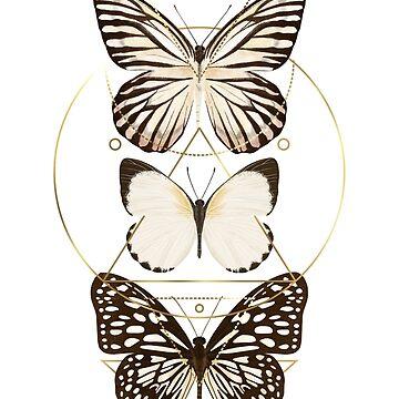 Schmetterlinge und Goldgeometrie von MartaOlgaKlara