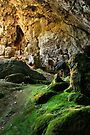 Yarrangobilly Caves by Darren Stones