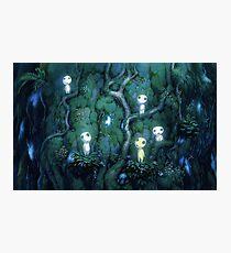 Ghibli spirits kodama Photographic Print