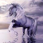 Blue Water Horse by Shanina Conway