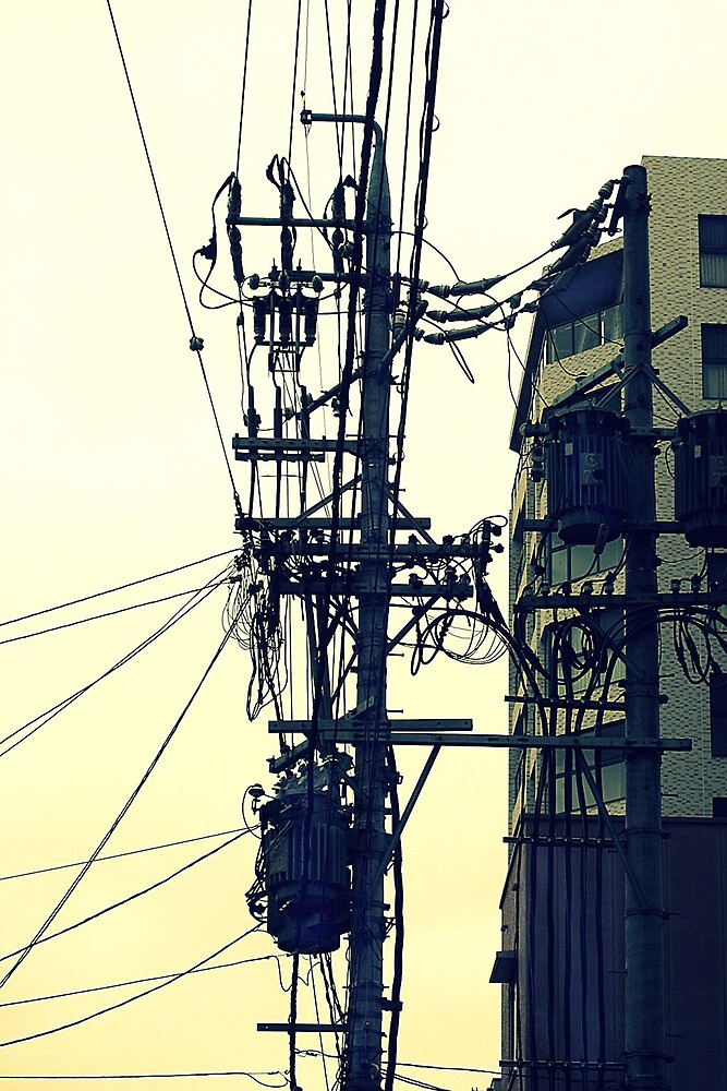 Wired by Marcia Luly