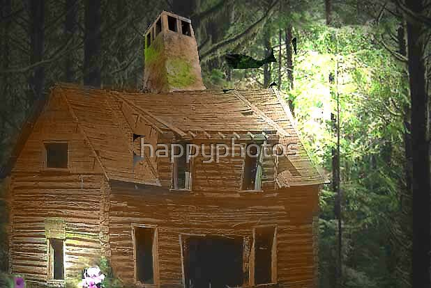 A cabin in the woods by happyphotos