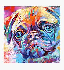 Pug in vibrant colours Photographic Print