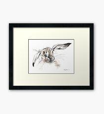 Charcoal Hare Framed Print