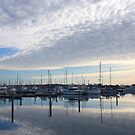 Hastings Marina by Patricia Gibson
