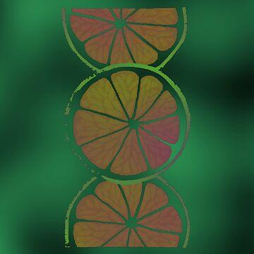 ORANGE SLICES by olph66