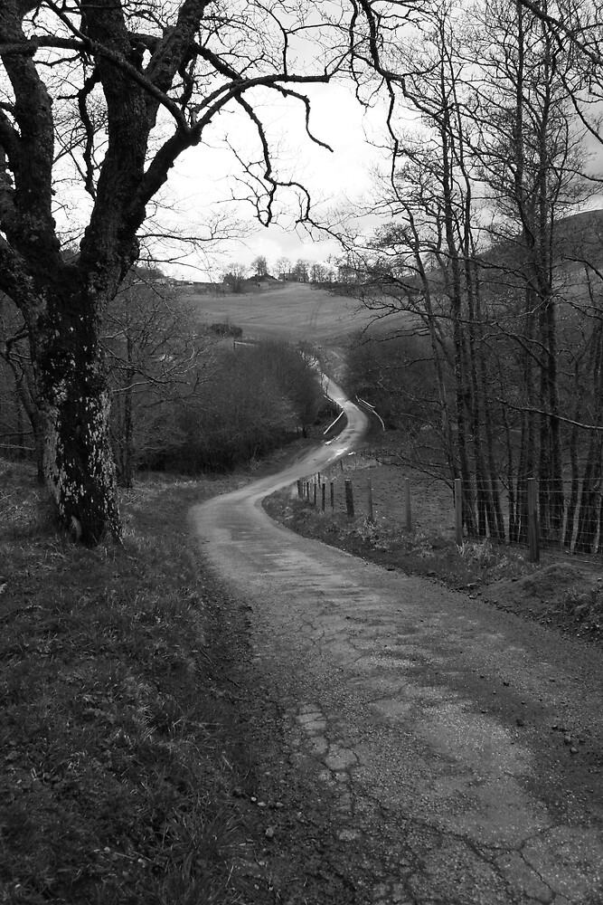 Lonely Road by Claire Williams