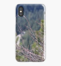 Brush iPhone Case