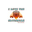 I Love the Skywhale Photograph Canberra Balloon Festival by Heatherian