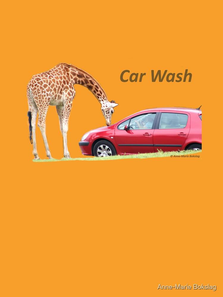 Car Wash!!!! by amb1946