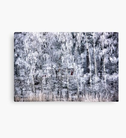Hidden gem Canvas Print