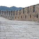 Great Wall of China by Gillian Anderson LAPS, AFIAP