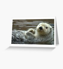Baby Otter Greeting Card