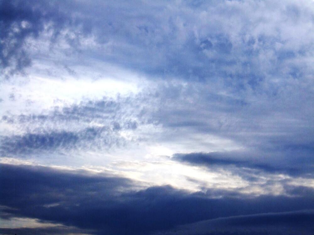 sky by Felicity Ward