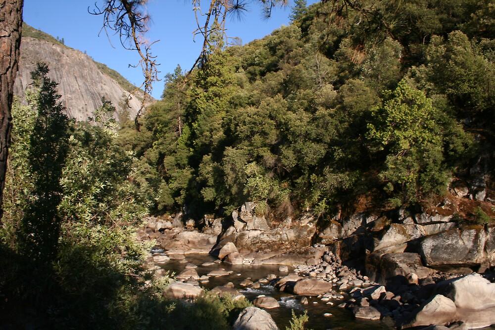 Merced river near Yosemite NP by Ilan Cohen