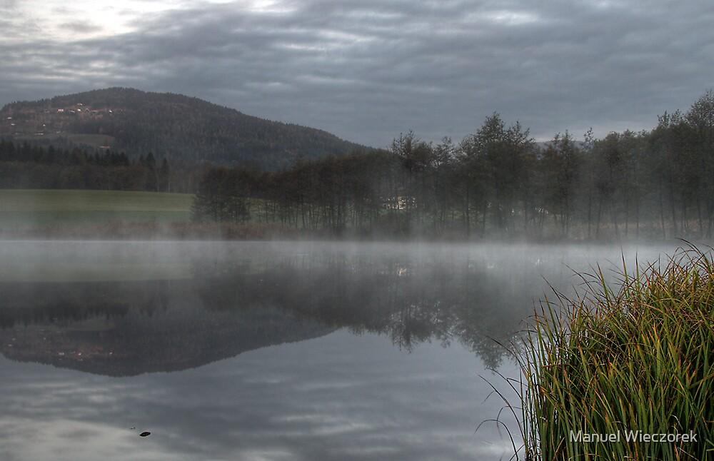 misty morning by Manuel Wieczorek
