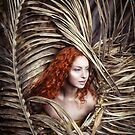 Red & Gold by jamari  lior
