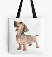 Dachshund Standing Tall Tote Bag