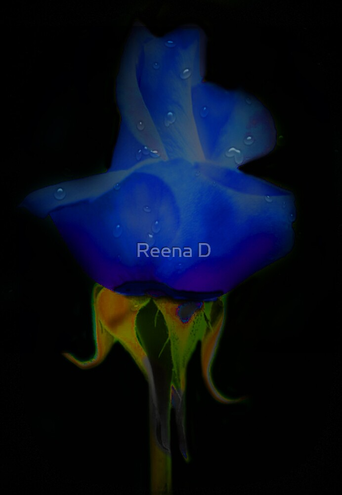 Playiing the blues... by Reena D
