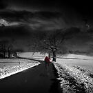 Where there is will, there is a way... by Reena D
