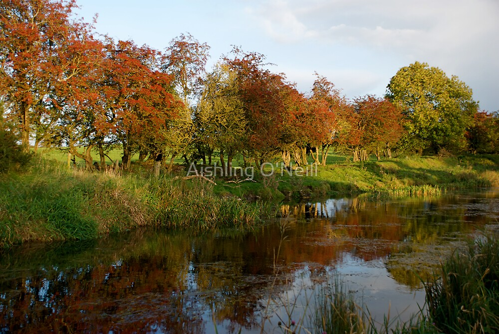 Ireland In Autumn III by Aishling O'Neill