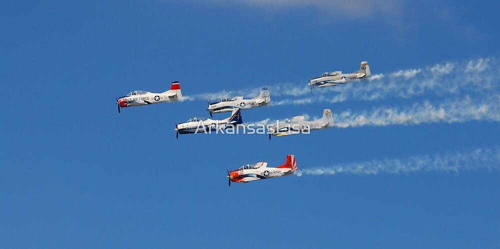 High Flying by ArkansasLisa
