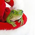 Santa's Little  Green Helper by JulieM