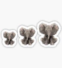 Baby Boo Trio Sticker