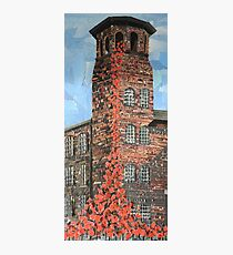Poppies Silk Mill Derby Photographic Print