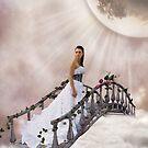 Bridge of Dreams by Andy Beattie