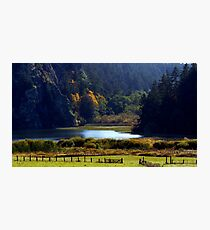 Headwaters of Lake Campbell Photographic Print