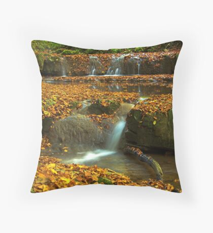SmallWaterfallinFall Throw Pillow