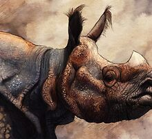Rhino by Ruth Taylor