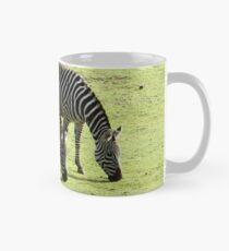 Zebras im Frühling Tasse