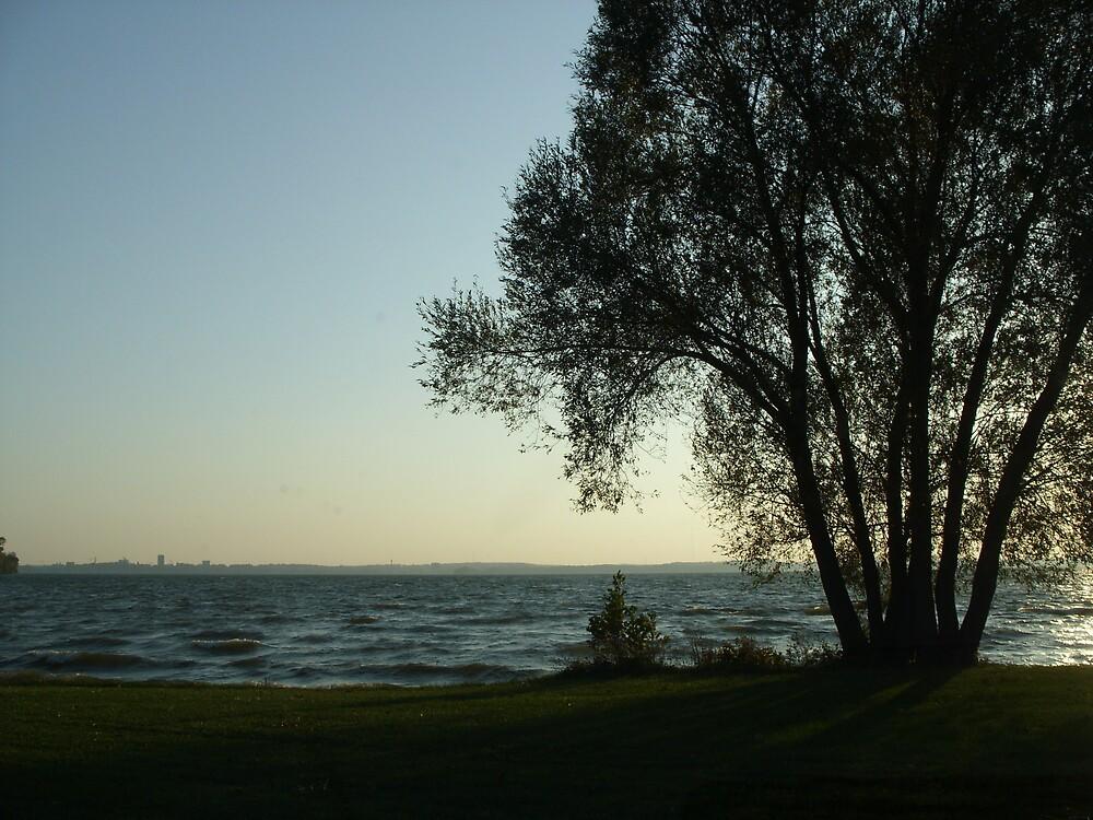 Lake Mendota by hollypen68