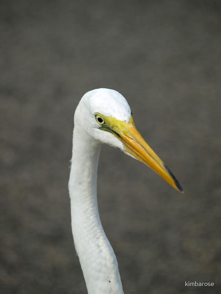 Long Neck by kimbarose