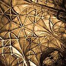 Heavens Web by Hena Tayeb