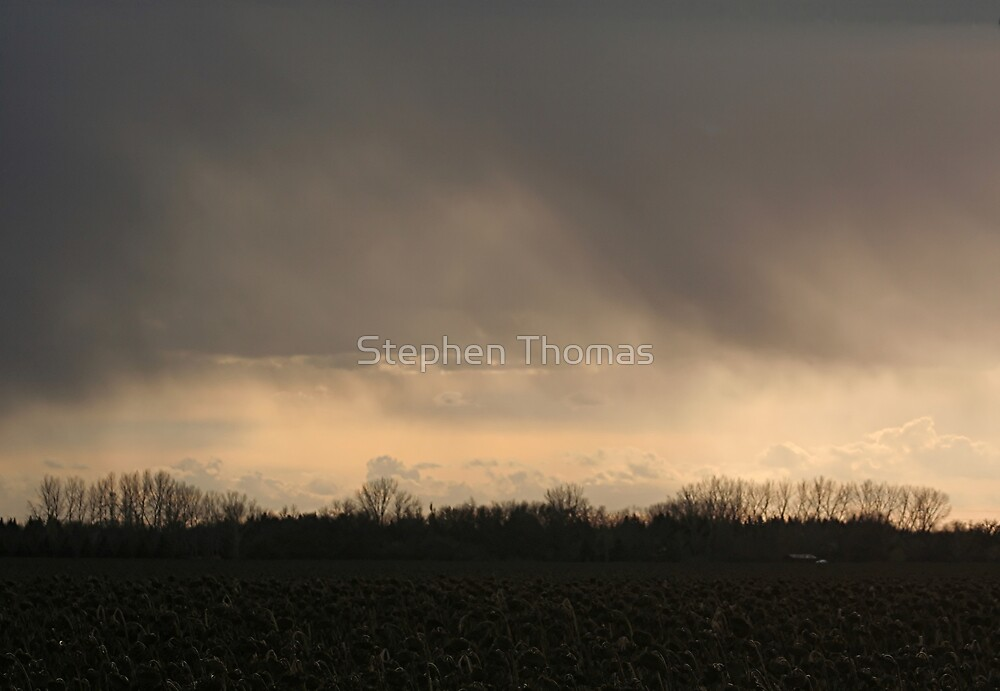 October Rain by Stephen Thomas