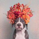 Flower Power, Davy Jones by SophieGamand