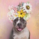 Flower Power, Wren by SophieGamand