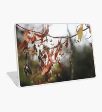 Autumn Leaves in Cambridgeshire England Laptop Skin