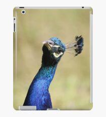 Curious peacock - Wiltshire, England iPad Case/Skin