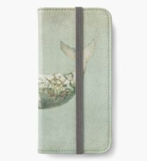 Far and Wide iPhone Wallet/Case/Skin