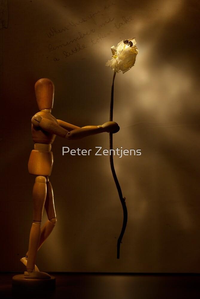 Wooden love by Peter Zentjens